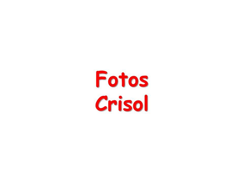 FotosCrisol