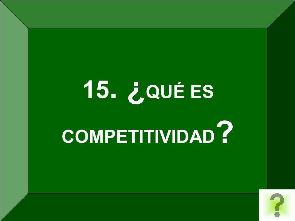 15. ¿ QUÉ ES COMPETITIVIDAD ?