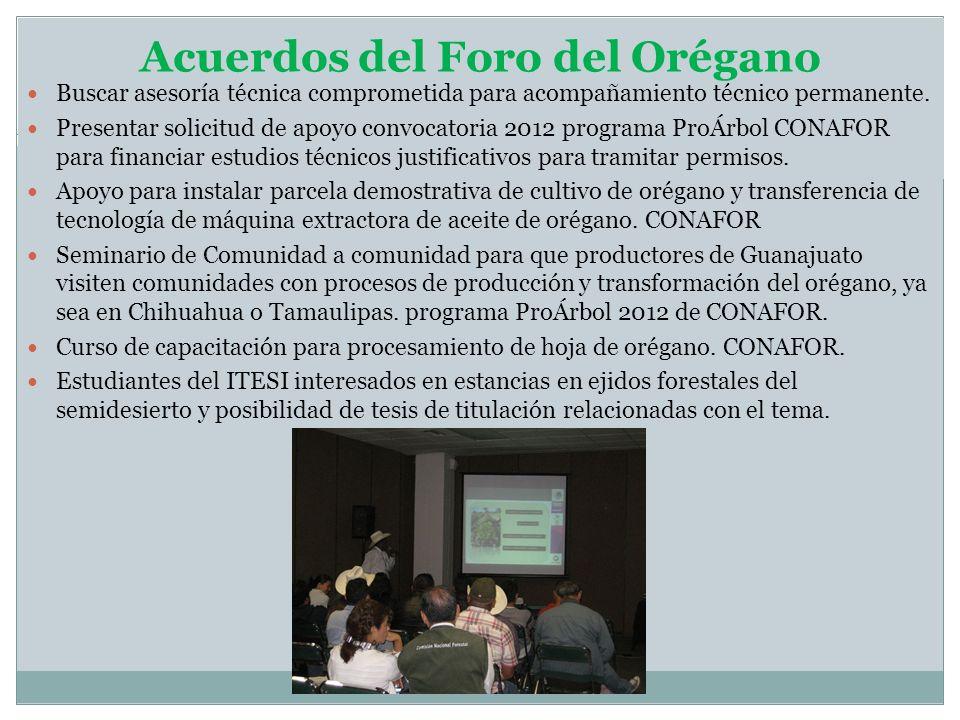 Acuerdos del Foro del Orégano Buscar asesoría técnica comprometida para acompañamiento técnico permanente. Presentar solicitud de apoyo convocatoria 2