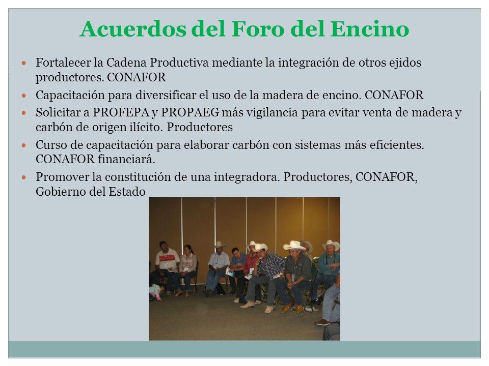 Acuerdos del Foro del Encino Fortalecer la Cadena Productiva mediante la integración de otros ejidos productores. CONAFOR Capacitación para diversific