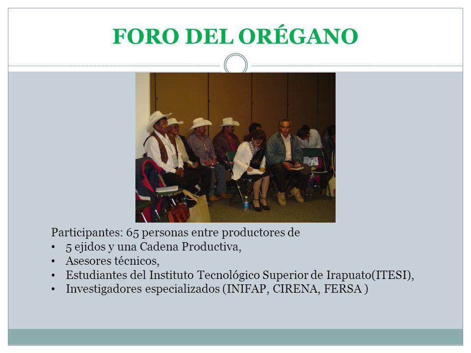 FORO DEL ORÉGANO Participantes: 65 personas entre productores de 5 ejidos y una Cadena Productiva, Asesores técnicos, Estudiantes del Instituto Tecnol