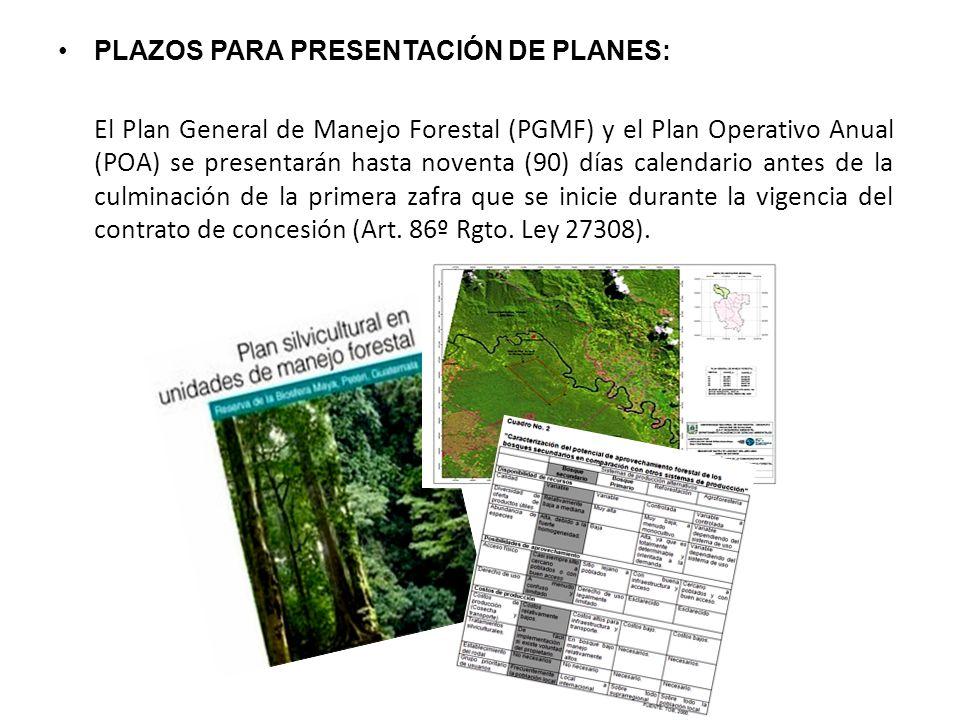 PLAZOS PARA PRESENTACIÓN DE PLANES: El Plan General de Manejo Forestal (PGMF) y el Plan Operativo Anual (POA) se presentarán hasta noventa (90) días calendario antes de la culminación de la primera zafra que se inicie durante la vigencia del contrato de concesión (Art.