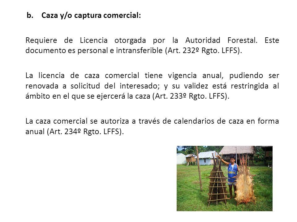 b.Caza y/o captura comercial: Requiere de Licencia otorgada por la Autoridad Forestal.