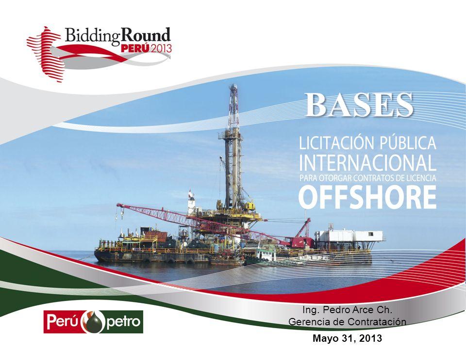 Licitación Pública Internacional Offshore - 2013 PORTAL CORPORATIVO