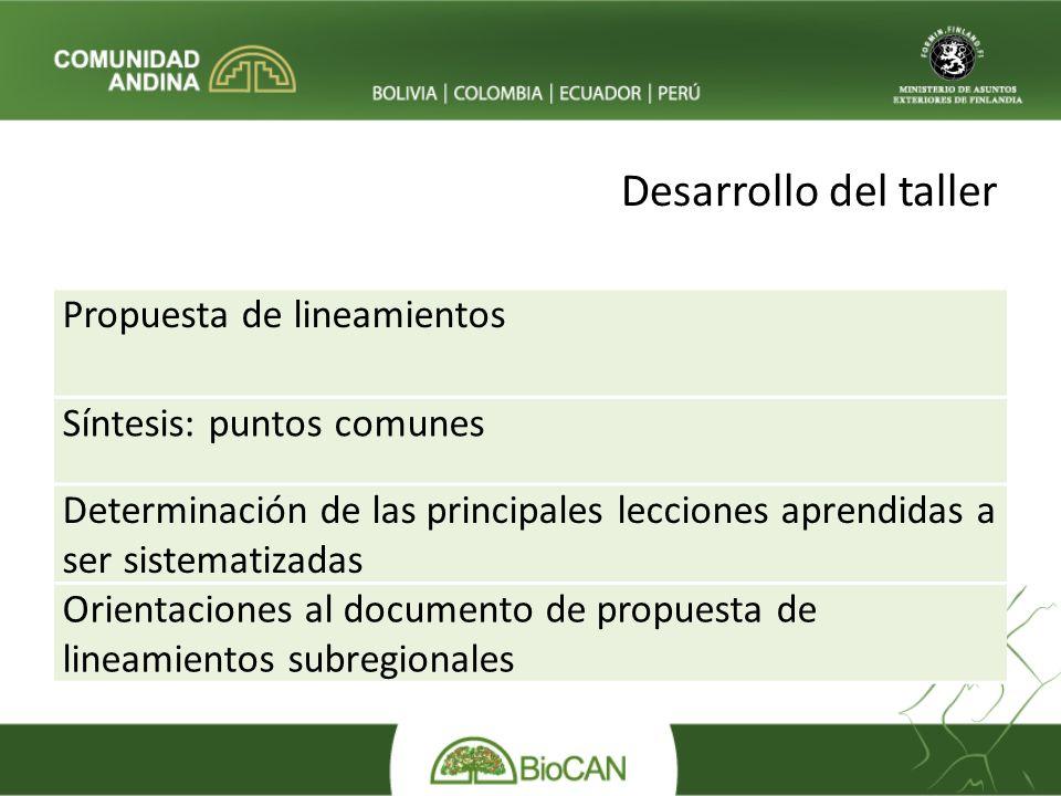 Desarrollo del taller Propuesta de lineamientos Síntesis: puntos comunes Determinación de las principales lecciones aprendidas a ser sistematizadas Orientaciones al documento de propuesta de lineamientos subregionales