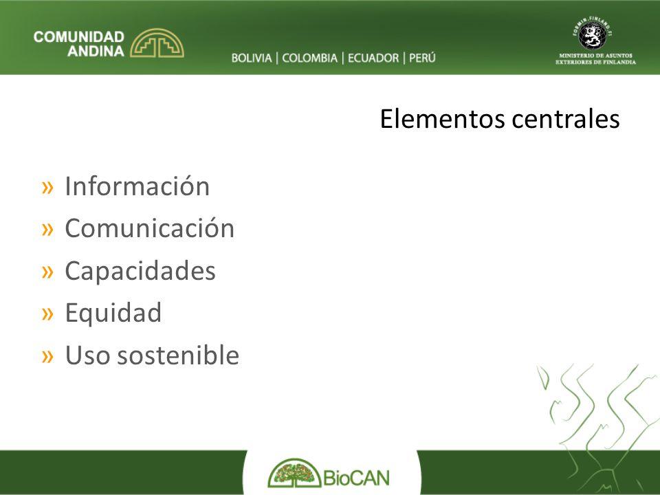 Elementos centrales »Información »Comunicación »Capacidades »Equidad »Uso sostenible