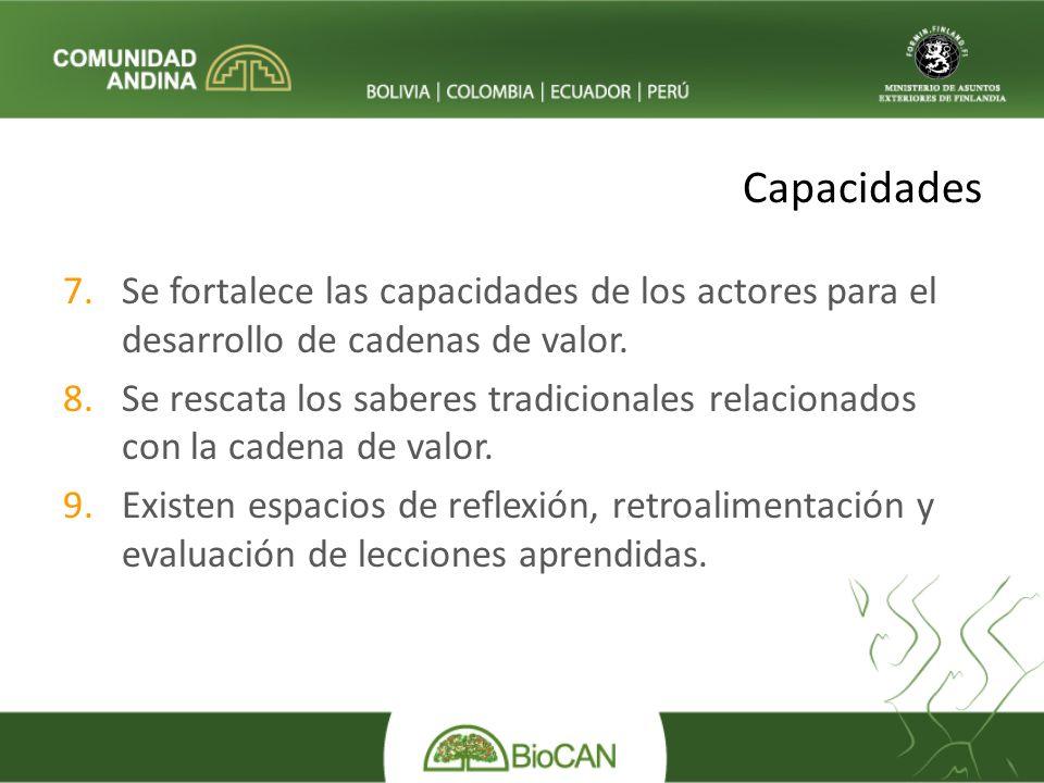 Capacidades 7.Se fortalece las capacidades de los actores para el desarrollo de cadenas de valor.