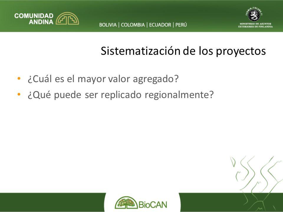 Sistematización de los proyectos ¿Cuál es el mayor valor agregado.
