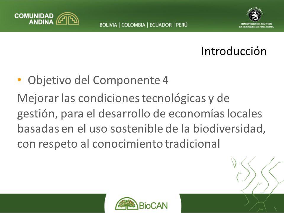 Introducción Objetivo del Componente 4 Mejorar las condiciones tecnológicas y de gestión, para el desarrollo de economías locales basadas en el uso sostenible de la biodiversidad, con respeto al conocimiento tradicional