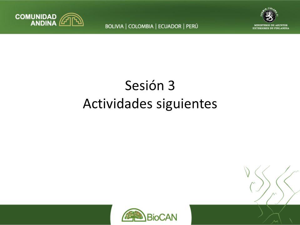 Sesión 3 Actividades siguientes