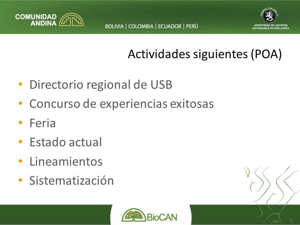 Actividades siguientes (POA) Directorio regional de USB Concurso de experiencias exitosas Feria Estado actual Lineamientos Sistematización