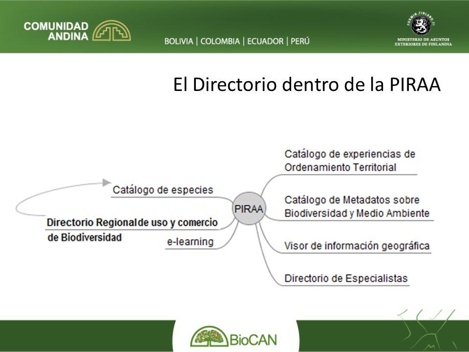 El Directorio dentro de la PIRAA