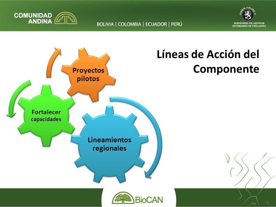 Líneas de Acción del Componente Lineamientos regionales Fortalecer capacidades Proyectos pilotos