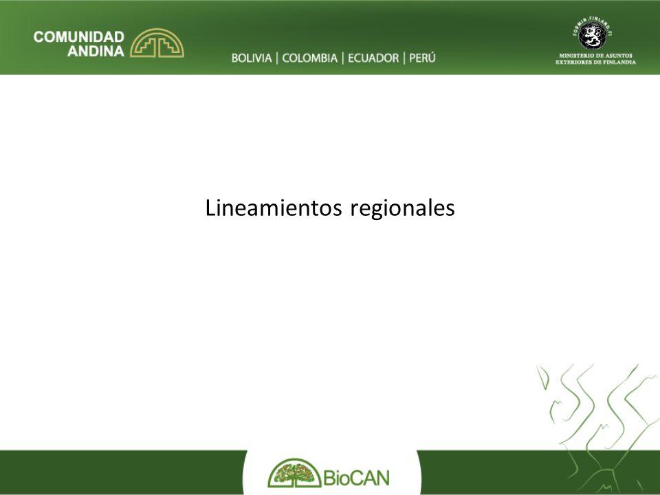 Lineamientos regionales