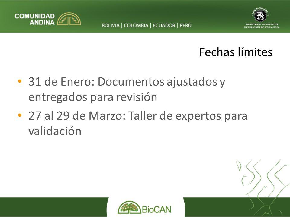 Fechas límites 31 de Enero: Documentos ajustados y entregados para revisión 27 al 29 de Marzo: Taller de expertos para validación