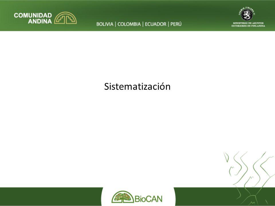 Sistematización