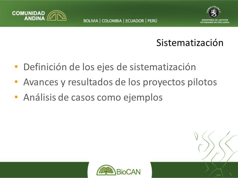 Definición de los ejes de sistematización Avances y resultados de los proyectos pilotos Análisis de casos como ejemplos