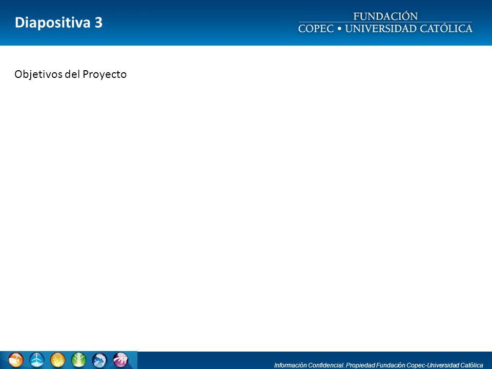 Información Confidencial. Propiedad Fundación Copec-Universidad Católica Diapositiva 3 Objetivos del Proyecto