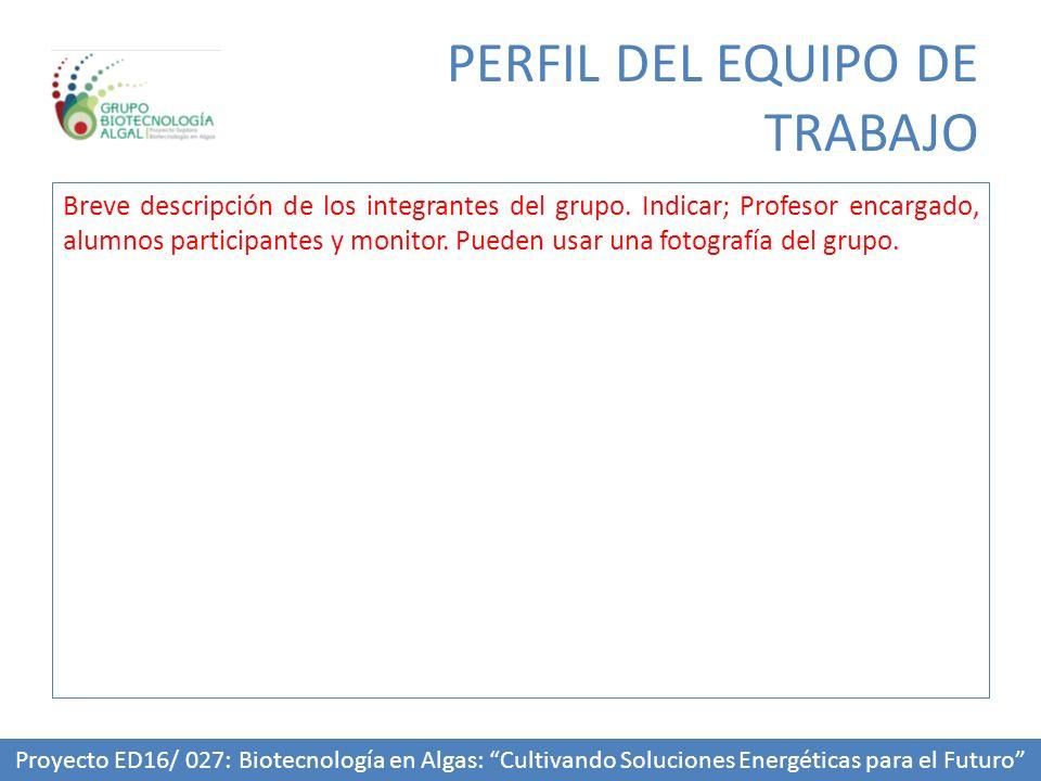 Breve descripción de los integrantes del grupo. Indicar; Profesor encargado, alumnos participantes y monitor. Pueden usar una fotografía del grupo. PE