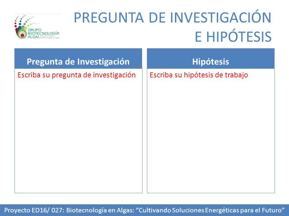PREGUNTA DE INVESTIGACIÓN E HIPÓTESIS Pregunta de Investigación Escriba su pregunta de investigación Hipótesis Escriba su hipótesis de trabajo Proyect