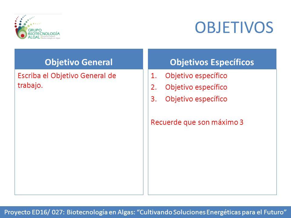 OBJETIVOS Objetivo General Escriba el Objetivo General de trabajo. Objetivos Específicos 1.Objetivo específico 2.Objetivo específico 3.Objetivo especí