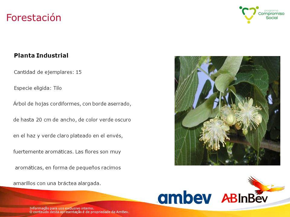Informação para uso exclusivo interno. O conteúdo desta apresentação é de propriedade da AmBev. Planta Industrial Cantidad de ejemplares: 15 Especie e