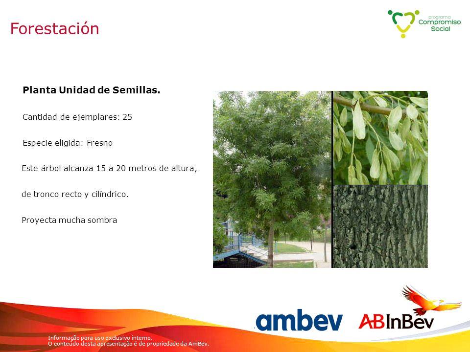 Informação para uso exclusivo interno. O conteúdo desta apresentação é de propriedade da AmBev. Planta Unidad de Semillas. Cantidad de ejemplares: 25