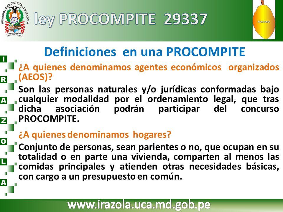Definiciones en una PROCOMPITE ¿A quienes denominamos agentes económicos organizados (AEOS)? Son las personas naturales y/o jurídicas conformadas bajo