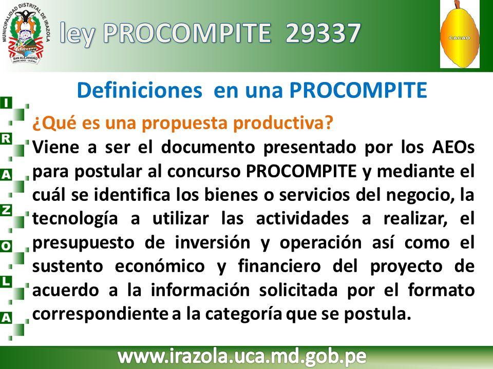 Definiciones en una PROCOMPITE ¿Qué es una propuesta productiva? Viene a ser el documento presentado por los AEOs para postular al concurso PROCOMPITE