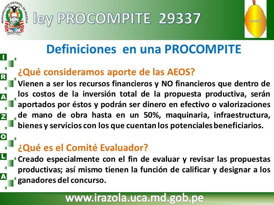 Definiciones en una PROCOMPITE ¿Qué consideramos aporte de las AEOS? Vienen a ser los recursos financieros y NO financieros que dentro de los costos d