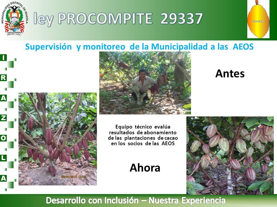 Supervisión y monitoreo de la Municipalidad a las AEOS Equipo técnico evalúa resultados de abonamiento de las plantaciones de cacao en los socios de l