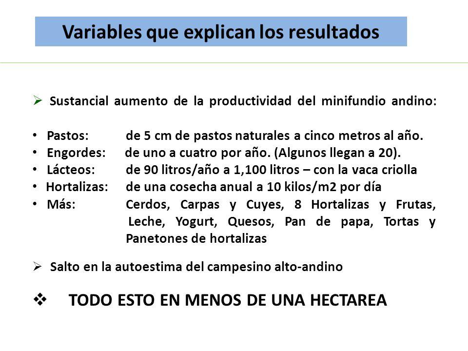 Sustancial aumento de la productividad del minifundio andino: Pastos: de 5 cm de pastos naturales a cinco metros al año. Engordes: de uno a cuatro por