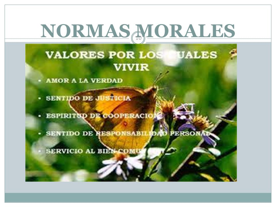NORMAS SOCIALES 9 Normas sociales