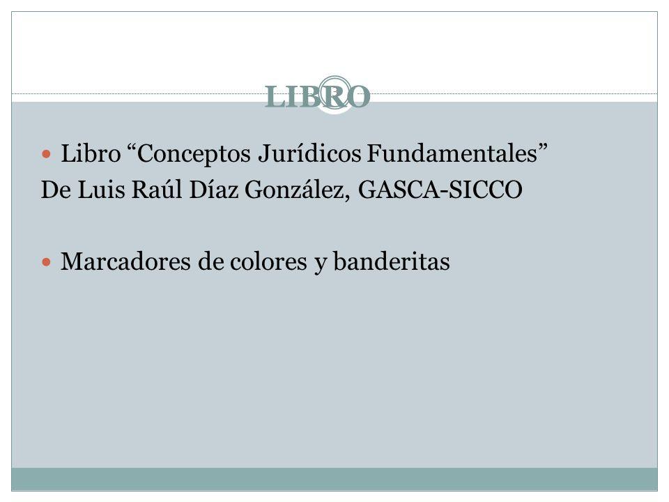 LIBRO 3 Libro Conceptos Jurídicos Fundamentales De Luis Raúl Díaz González, GASCA-SICCO Marcadores de colores y banderitas