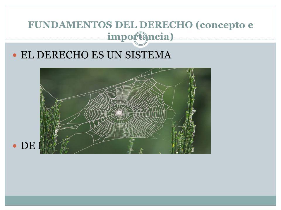 FUNDAMENTOS DEL DERECHO (concepto e importancia) 7 EL DERECHO ES UN SISTEMA DE NORMAS JURÍDICAS