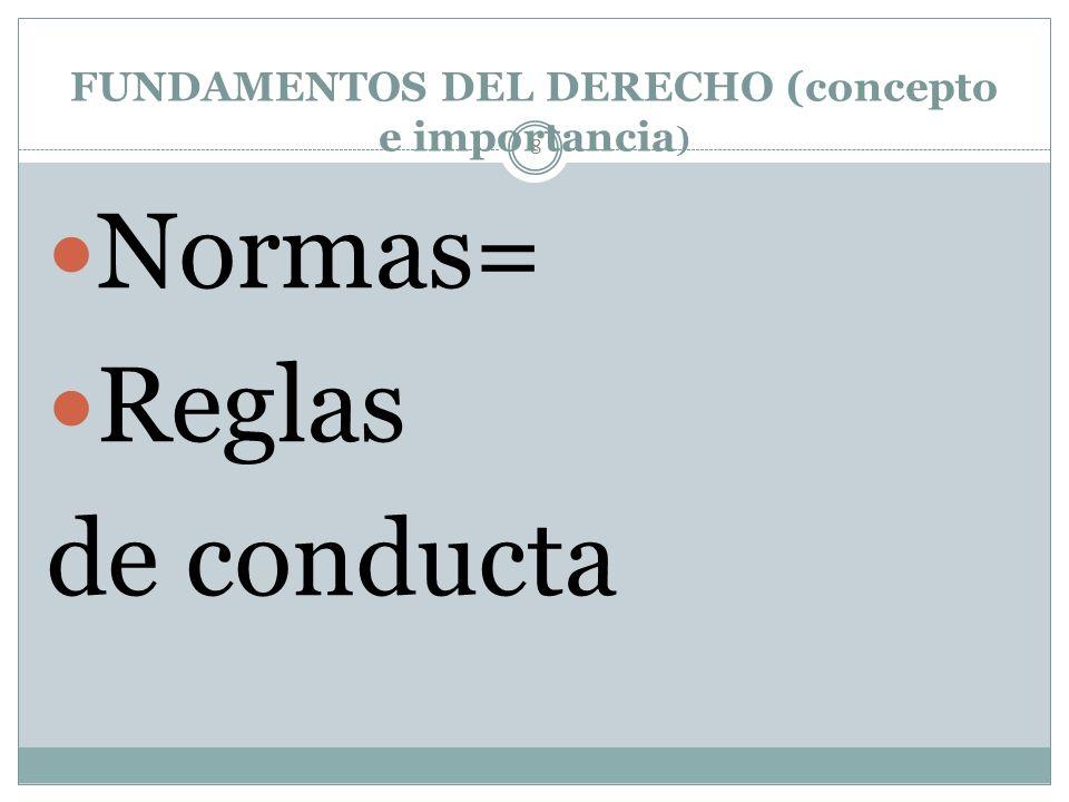 NATURALEZA JURÍDICA 38 DERECHOS HUMANOS Ideas abstractas y generales.