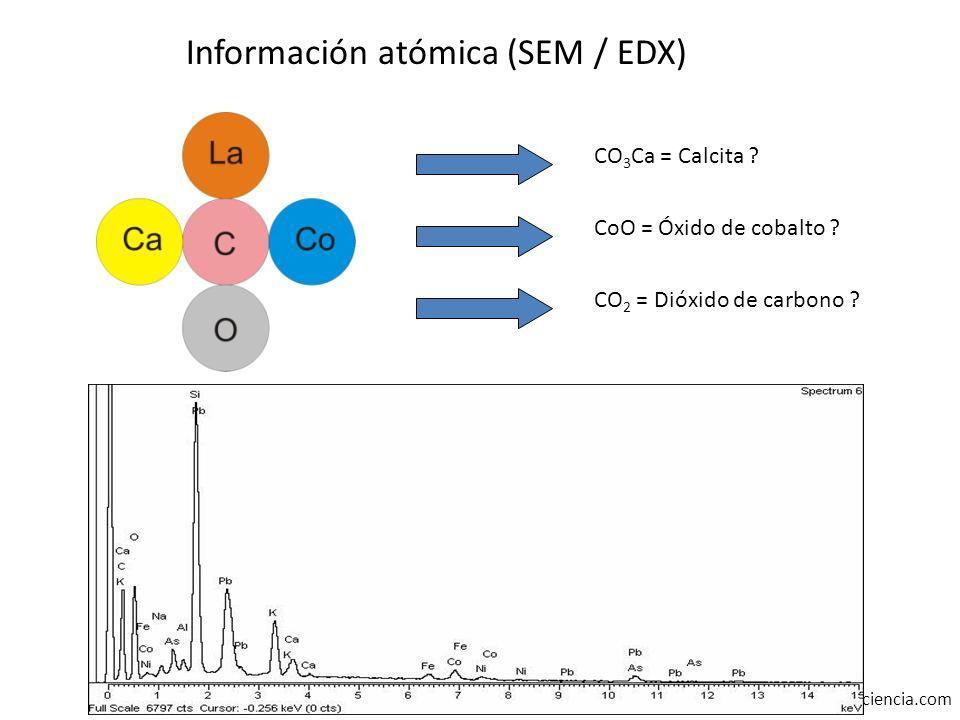 www.actioarteyciencia.com CO 3 Ca = Calcita ? CoO = Óxido de cobalto ? CO 2 = Dióxido de carbono ? Información atómica (SEM / EDX)