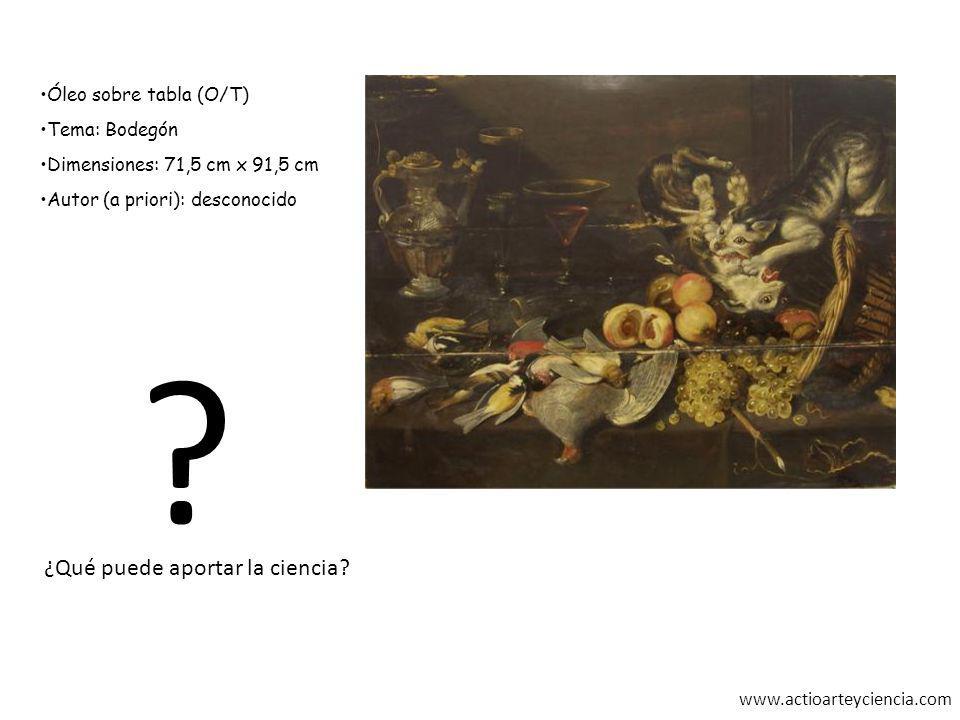 www.actioarteyciencia.com Óleo sobre tabla (O/T) Tema: Bodegón Dimensiones: 71,5 cm x 91,5 cm Autor (a priori): desconocido ? ¿Qué puede aportar la ci
