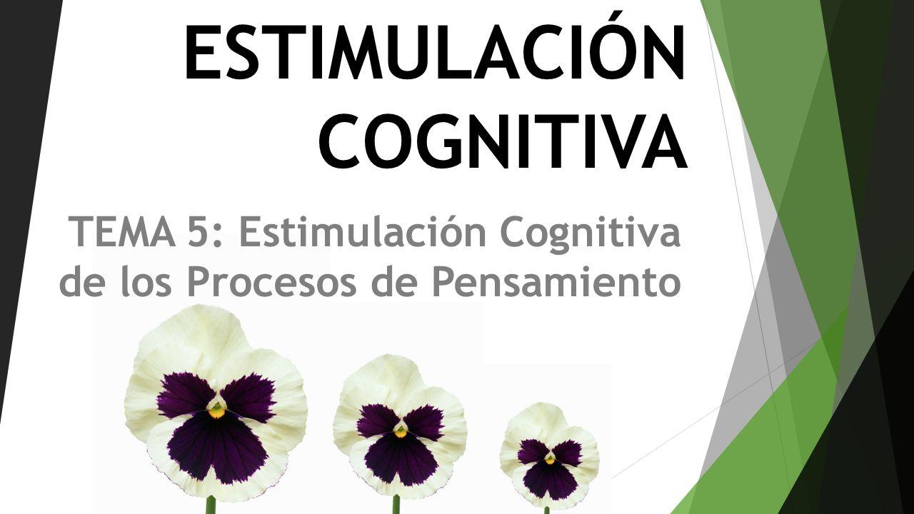 ESTIMULACIÓN COGNITIVA TEMA 5: Estimulación Cognitiva de los Procesos de Pensamiento
