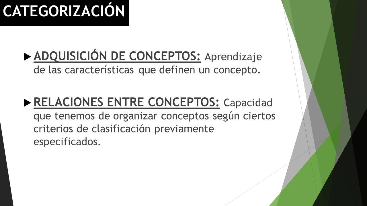 CATEGORIZACIÓN ADQUISICIÓN DE CONCEPTOS: Aprendizaje de las características que definen un concepto. RELACIONES ENTRE CONCEPTOS: Capacidad que tenemos