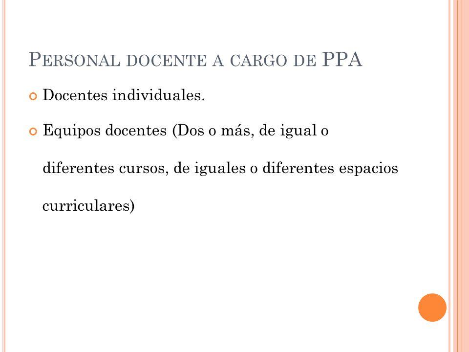 P ERSONAL DOCENTE A CARGO DE PPA Docentes individuales.