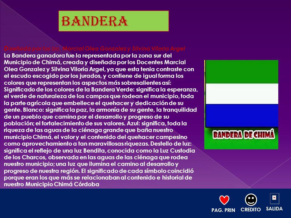 D iseñada por los Lic. Marcial Olea Gonzalez y Silvina Viloria Argel La Bandera ganadora fue la representada por la zona sur del Municipio de Chimá, c