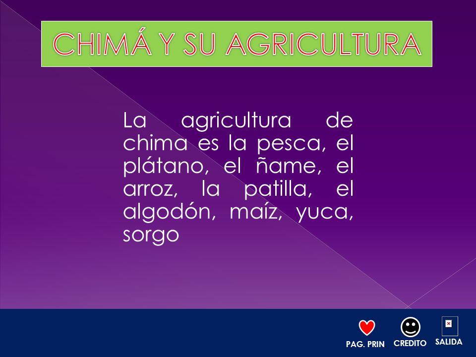 La agricultura de chima es la pesca, el plátano, el ñame, el arroz, la patilla, el algodón, maíz, yuca, sorgo PAG. PRIN. CREDITO SALIDA