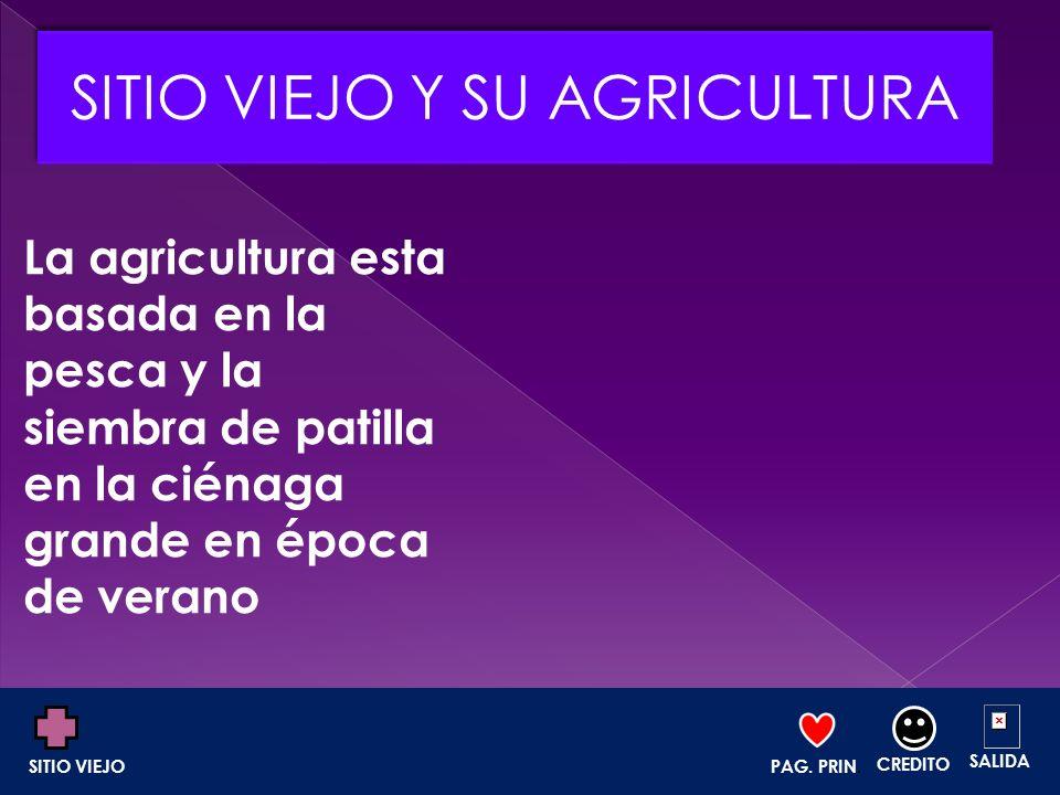 La agricultura esta basada en la pesca y la siembra de patilla en la ciénaga grande en época de verano PAG. PRIN. CREDITO SALIDA SITIO VIEJO