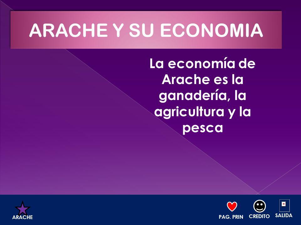 La economía de Arache es la ganadería, la agricultura y la pesca PAG. PRIN. CREDITO SALIDA ARACHE