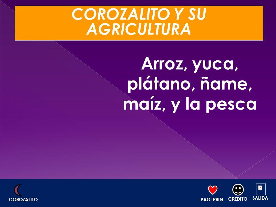 COROZALITO Y SU AGRICULTURA Arroz, yuca, plátano, ñame, maíz, y la pesca PAG. PRIN. CREDITO SALIDA COROZALITO