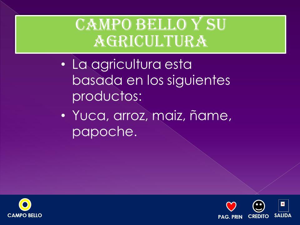 La agricultura esta basada en los siguientes productos: Yuca, arroz, maiz, ñame, papoche. PAG. PRIN. CREDITO SALIDACAMPO BELLO