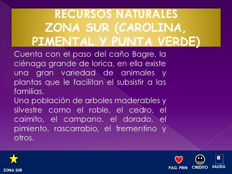 Cuenta con el paso del caño Bagre, la ciénaga grande de lorica, en ella existe una gran variedad de animales y plantas que le facilitan el subsistir a