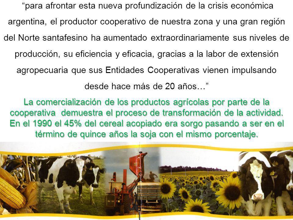 La comercialización de los productos agrícolas por parte de la cooperativa demuestra el proceso de transformación de la actividad. En el 1990 el 45% d