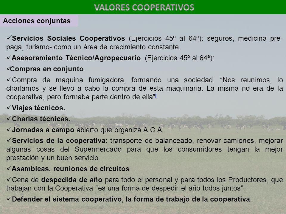 Servicios Sociales Cooperativos (Ejercicios 45º al 64ª): seguros, medicina pre- paga, turismo- como un área de crecimiento constante. Asesoramiento Té
